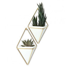 Umbra Trigg Wall Vessel Small - Brass - Set of 2