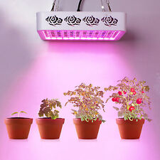 300W Reflector LED Grow Light double chips Veg Flower Medical Plants growth lamp