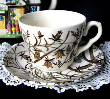 Staffordshire Brown Transferware Teacup and Saucer English Ironstone Tableware