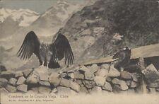 CORDILLERA CONDORES EN LA GUARDIA VIEJA CHILE N° 66 ED. J. ALLAN