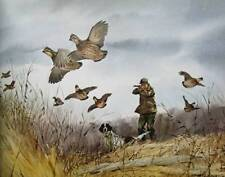Quail Hunting, Shooting with Springer by Milton C Weiler