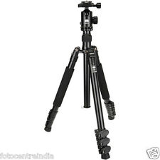 Sirui ET-2004 4-Section Aluminum Tripod with E20 Ball Head, 12KG Load Capacity