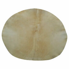 More details for sd drum head goat skin 22