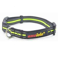 Reflective Dog Collar Buckle Adjustable Safety with D Ring.Matching Harness