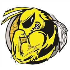 "SKI DOO BEE 6"" DECAL Snowmobile Sticker Truck Sled Laptop Renegade MXZ Summit"