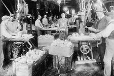 Schoenhut Doll Factory Workers Philadelphia ca.1919 View 8x12 photo