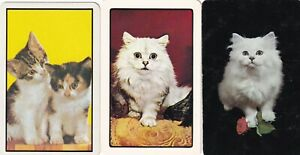 Swap Playing Cards x 3 Cats