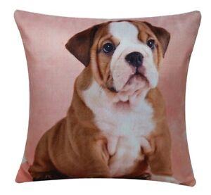 Square Olde English Bulldog Animal Print 17x17 Cushion Cover, Pillowcase for Bed