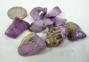 Atlantisite Stichtite in Serpentine Tumbled Chakra Stones 14.1 grams US Seller