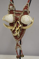 Papua New Guinea Dog Teeth Gold Lip Shell Dog Teeth Woven Red Fiber Necklace