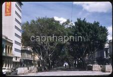 Vintage 1952 Slide Photo HAVANA Cuba PRADA Habana