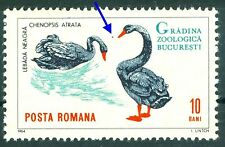 1964 Black swan,Cygne noir,Birds,Bucharest ZOO Animals,Romania,Mi.2331,MNH,Error