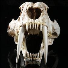 1:1 simulation Saber Tooth Tiger sabertooth skull Smilodon Fatalis Model Resin
