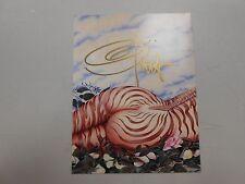 "SIGNED Olivia De Berardinis blank card note ""Zebra II""! NM/MN and stunning LOOK!"