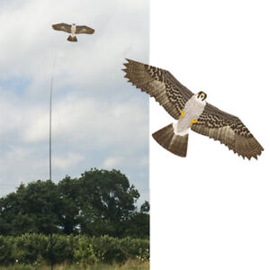 Falcon Kite kits. Bird Scarer Protect Farmers Crops. With A Free Line