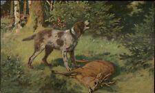 Hunting Dog Howling Found Dead Deer c1910 Postcard