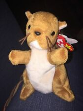 """Nuts"" beanie baby"