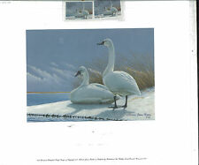 WISCONSIN #15 1992 STATE DUCK STAMP PRINT TUNDRA SWANS James Riddet remarque