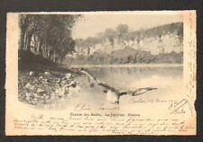 GENEVE (SUISSE) CHEMIN des SAULES , la jonction , vol de mouettes en 1903