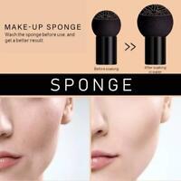 1xAir Cushion Mushroom Head CC Cream Concealer Moisturizing Makeup BB I3P8