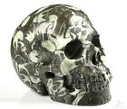 """5.0"""" RARE FOSSIL Carved Crystal Skull, Realistic, Crystal Healing"""