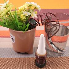2pc automatische Bewässerung für Topfpflanzen Blumentopf Wasserspender Gießkanne