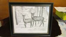 Framed Whitetail Deer Pencil Sketch Print by Artist F.W. Davis