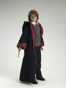 """Tonner Dolls Harry Potter at Hogwarts 17"""" Doll Daniel Radcliffe 2005 NRFB"""