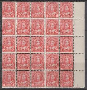 NEWFOUNDLAND SG118 1911 2c CARMINE BLOCK OF 25 MNH