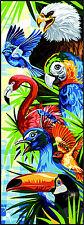 Margot De Paris Tapicería/Lienzo Punto Cruz – Tropical Pájaros Pele Mele Oiseaux