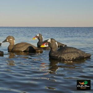 AVERY OUTDOORS GHG COMMERCIAL GRADE SURF SCOTER DECOYS - 6 PACK