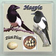 MAGPIE GARDEN BIRD COASTER  LIMITED EDITION XMAS GIFT