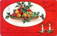 1907 Clapsaddle Best Christmas Wishes Fruit Holly Art Undivided Postcard BZ