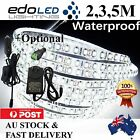2M 3M 5M 600 LED Strip Lights Cool Warm Natural White 12V Waterproof Car Camping