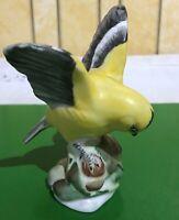 CROWN STAFFORDSHIRE BIRD GOLDFINCH No. 257 by LINLEY ADAMS BONE CHINA  PERFECT