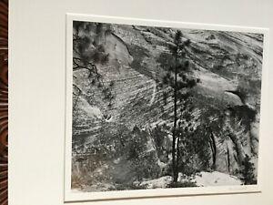 "Tom Mudd - ""Landscape, 1998"" - Silver Gelatin - Signed - Pristine - Print #1"