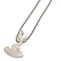 Tottenham Hotspur FC Stainless Steel Pendant and Chain | OFFICIAL