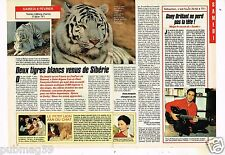 Coupure de presse Clipping 1992 (2 pages) Zoo de Beauval Tigre blanc de Sibérie