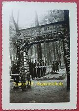 Foto Soldatenfriedhof der 31. Infanterie Division in Russland, Wehrmacht Gräber