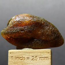 ZB96- SUCCINITE - NATURAL BALTIC AMBER FROM POLAND
