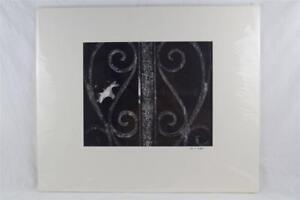 Black & White Photography Urban Art Wrought Iron Detail 20x24