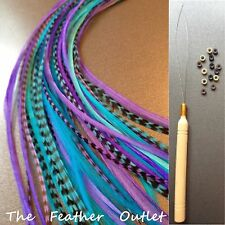 Feathers Hair Extensions Kit Lot 10 Grizzly long Real Purple Blue SHS KIT