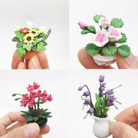 Mini1:12 Dollhouse Miniature Green Plant Flower in Pot Fairy Garden Accessory