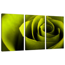 Three Lime Green Canvas Pictures Wall Art Bed Living Room Prints 3110