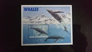 Timbre/feuille British Antartic Territory. 1996. Baleines. NEUF