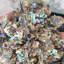 50g Abalone Shell scrap Inlay craft Leftovers Guitar Luthier manicure PAUA