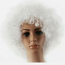 70'S Cury Afro Wig Fancy Dress Wigs Funky Disco Clown Style Costume Hair