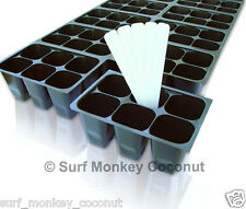 144 Cells Seedling SEED STARTER TRAY, Standard Cell Size, Easy-out, Germination