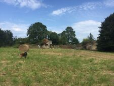 4 Acres Of Land With Derelict Buildings In Normandy