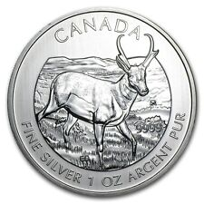 2013 1 oz Silver Canadian Antelope Coin - Canadian Wildlife Series - SKU #71331